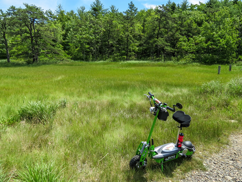 Froggy The Scoot. The  Dragon Ponds, Kennebunk Bridle Path, Kennebunk ME