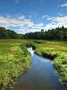 Kennebunk Bridle Path, Kennebunk ME 8/10 (Photomatrix HDR)