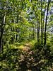 Kennebunk Bridle Path, Kennebunk ME