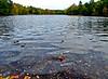 Old Falls Pond, Mousam River, Kennebunk ME 10/10