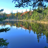 """Beaver pond"" Schoodic section of Acadia National Park."