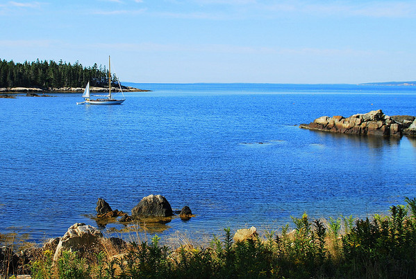Temporary anchorage in a Schoodic cove - Acadia National Park.