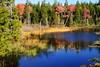 Schoodic Pond, Acadia National Park