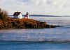*Curtis Island Light in a winter sea-fog*<br /> A deed was signed with John Dorr of Boston on March 14, 1835 purchasing Negro Island for a lighthouse reservation for $400. On May 20, 1835 the government entered into a construction contract with George Gault of Boston. Gault agreed to build a lighthouse and dwelling on the island for $2,569.