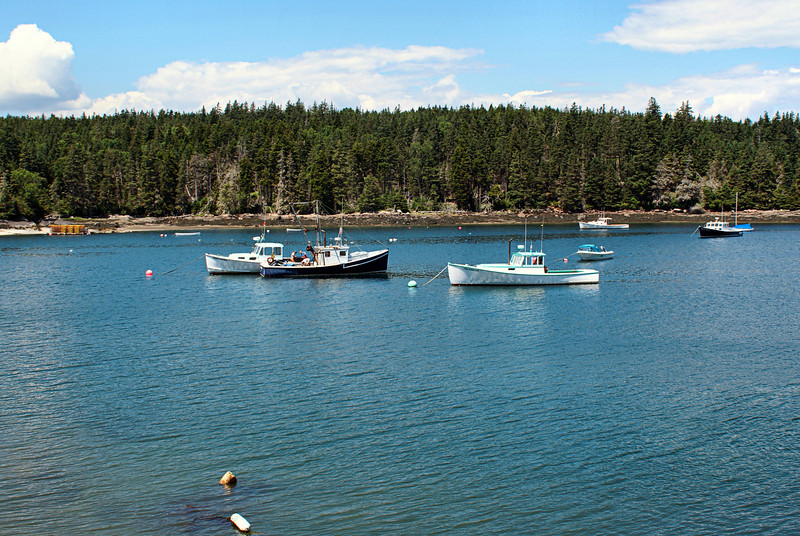 Lobster boats at anchor near the ferry landing on Isle au Haut.