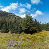 Beehive Mountain Panorama, Acadia National Park