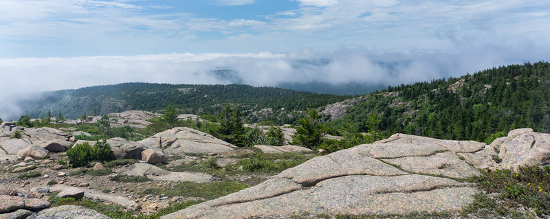 Mount Pemetic, Acadia National Park, Maine, August 14, 2016