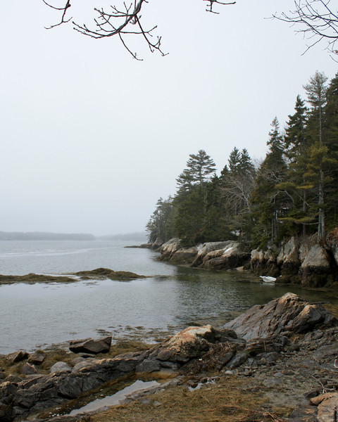 Osborn Finch Preserve, coastal Maine