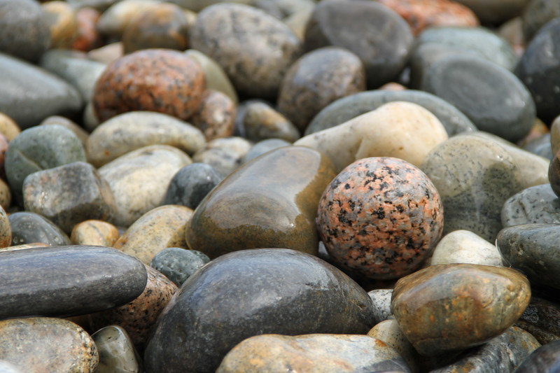 Rocks of Acadia
