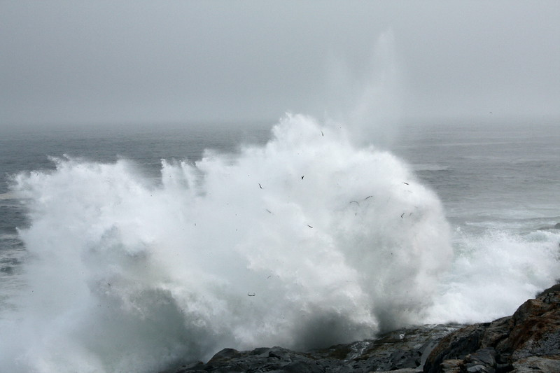 Storm waves at Pemaquid, Maine