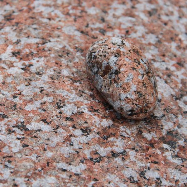 Pink Granite of Acadia