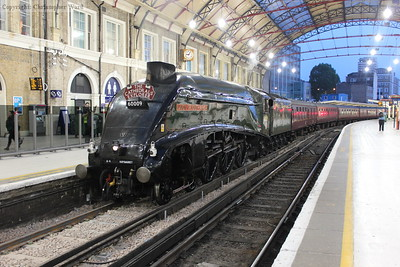 60009 rests after bringing in the final leg of the Highlands & Islands Explorer for Steam Dreams