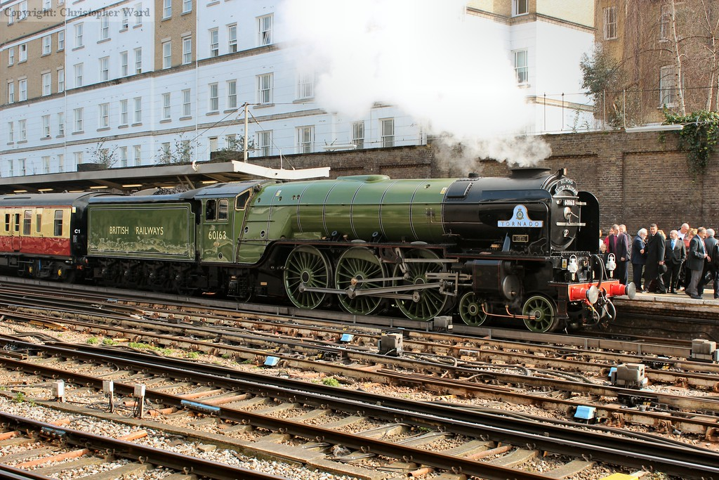 Tornado sits at Victoria with her second Pullman outing of the year