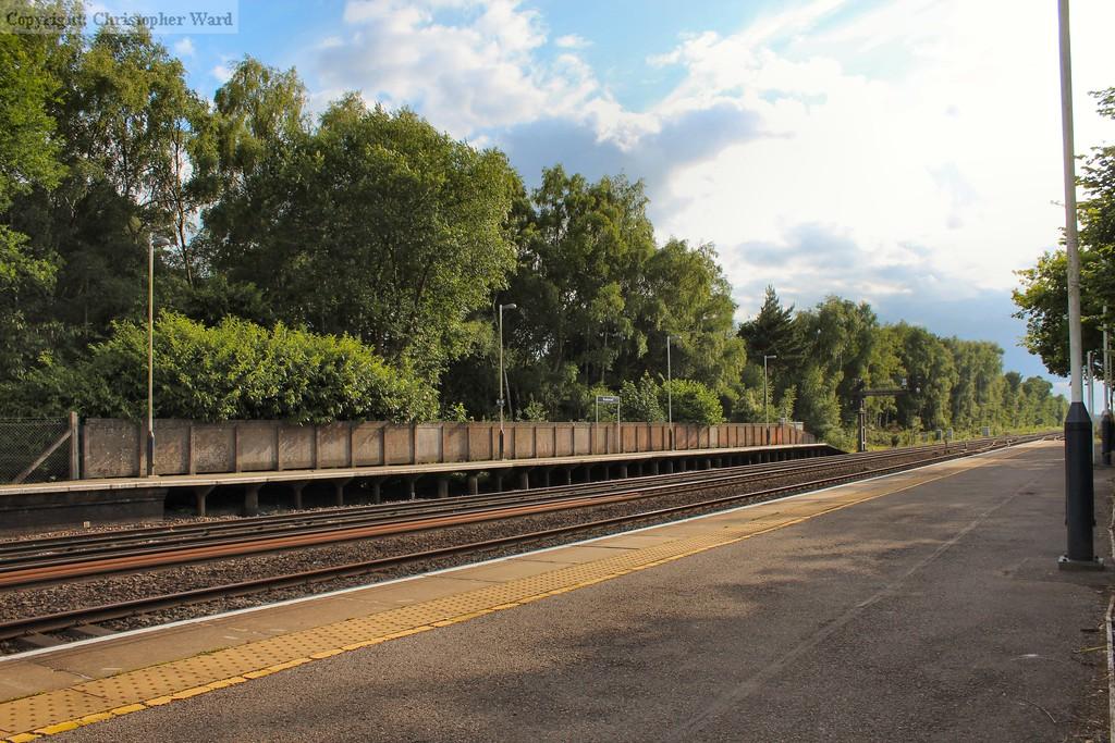 Sunshine in Surrey