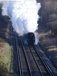 Tangmere gets into her stride