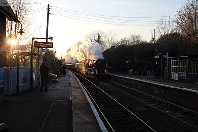 Glinting in the late afternoon sunshine, Clan Line makes a pretty picture passing through Betchworth