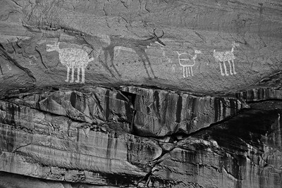 canyondechelly6bw