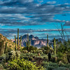 Superstition Mountain - Usery #1
