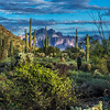 Superstition Mountain - Usery #2