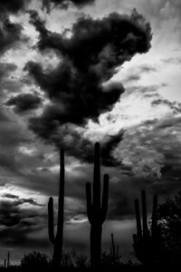 sonoran_sunset_072012_4026