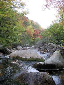 Fall colors on Roaring Brook