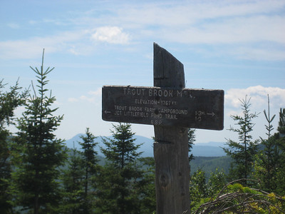 On the summit of Trout Brook Mountain