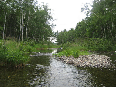 The outlet for Upper South Branch Pond.