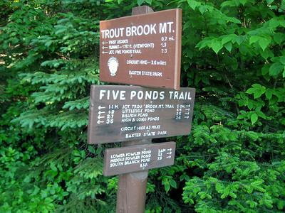 On Dave's birthday, we hiked up Trout Brook Mountain and then followed the Five Ponds Trail.