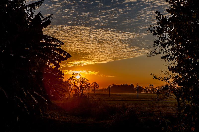 Sunset at Majuli, Assam, India