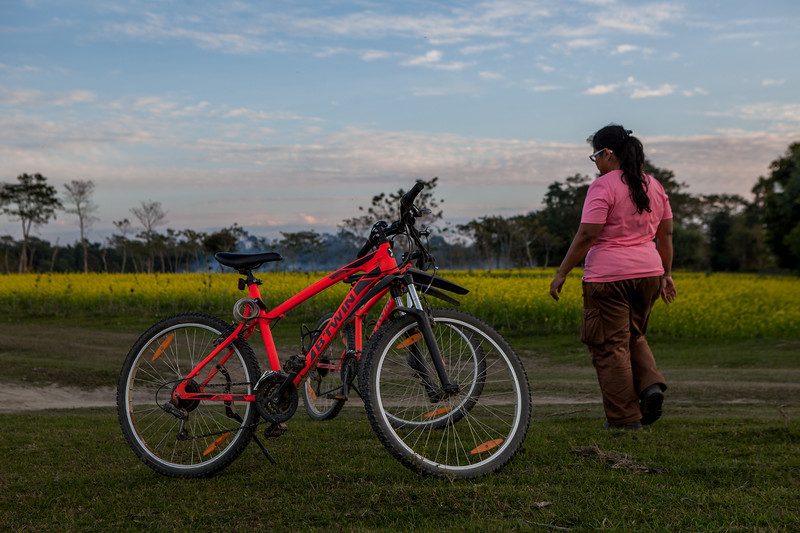 Cycles from Majuli Cycle Cafe, Assam, India