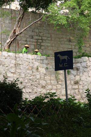 WC dla psów. Makao i Hongkong tym róznia sie od Chin, że tu wszyscy po psach sprzątaja, a tam wszyscy wysadzaja dzieci na ulicy (lub w muzeum)