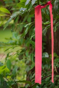 Plastic film ties