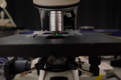 Postage stamp Raman spectroscopy 532 nm laser microscope objective