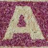 BMA Malaya 4 cents postal stationery card paper texture