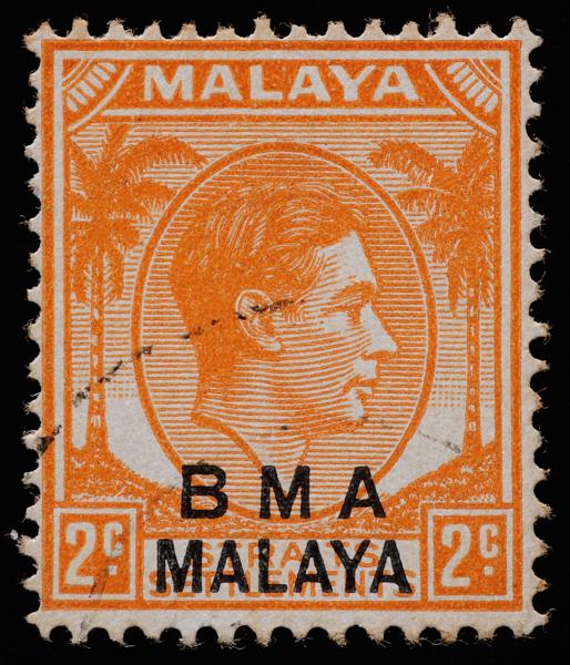 BMA MALAYA 2c orange white forehead variety