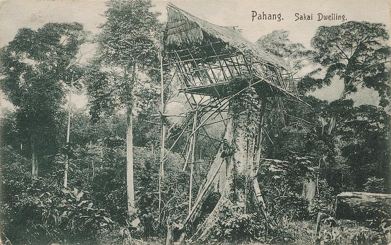 Malaya Pahang Sakai dwelling postcard