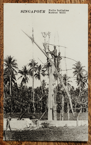 Picture postcard of native well with huge shadoof