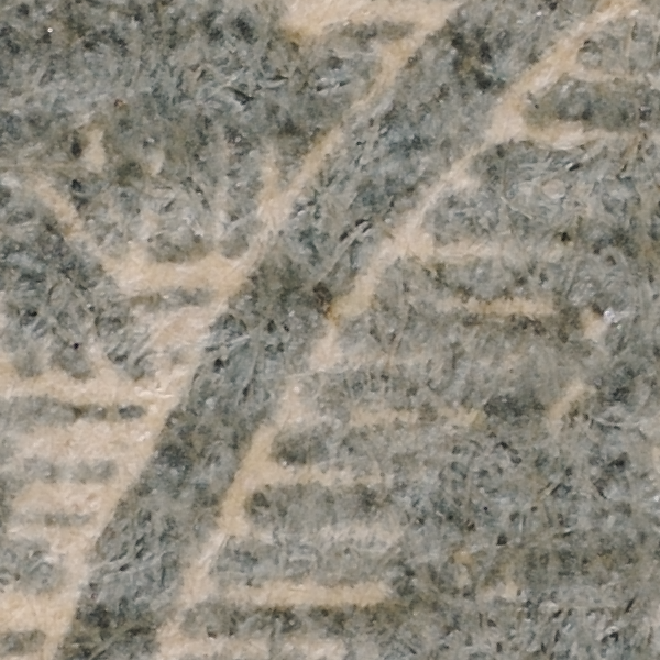 BMA MALAYA 6c striated paper fibres at high magnification