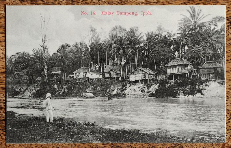 Malaya postcard showing kampong along river in Ipoh, Perak