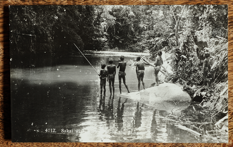 Malaya postcard showing Orang Asli hunting along Sungei Sungkei with blowpipe