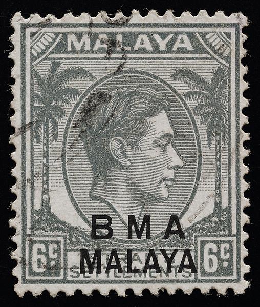 BMA Malaya 6c white forehead variety