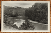Malaya Pahang river scene postcard from British Empire Exhibition 1924