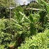 Sabah 2008