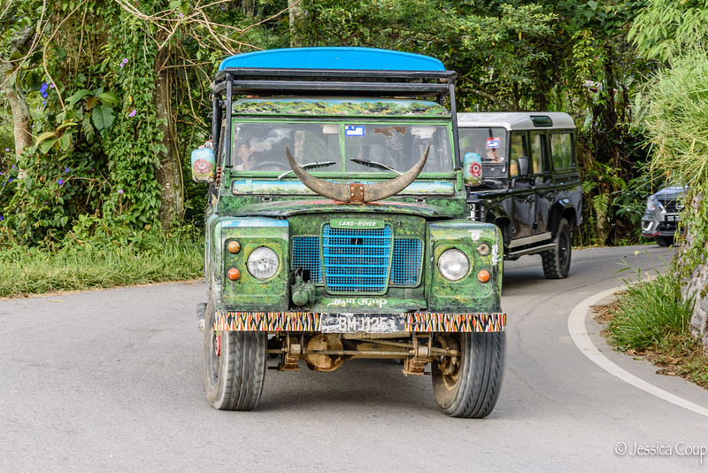 Vehicle of Choice in the Cameron Highlands