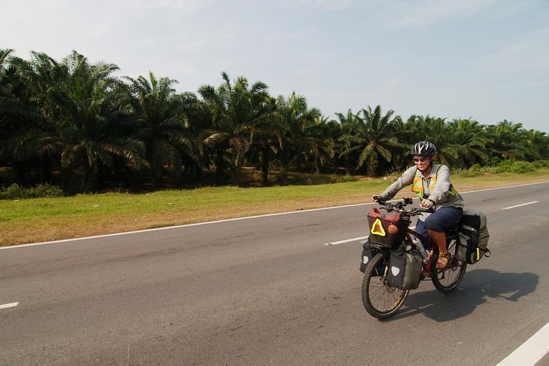 Hot riding through oil palm fields