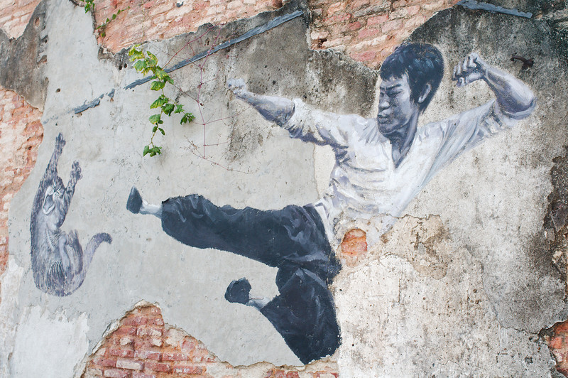 """""""The Real Bruce Lee Would Never Do This"""" painted by """"Artists for Stray Animals"""""""