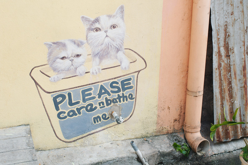 """""""Please Care and Bathe Me"""" by Artists for Stray Animals"""