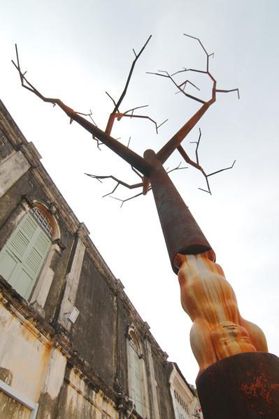 Baby tree sculpture on Armenia Street