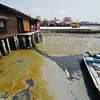 Chew Jetty at low tide