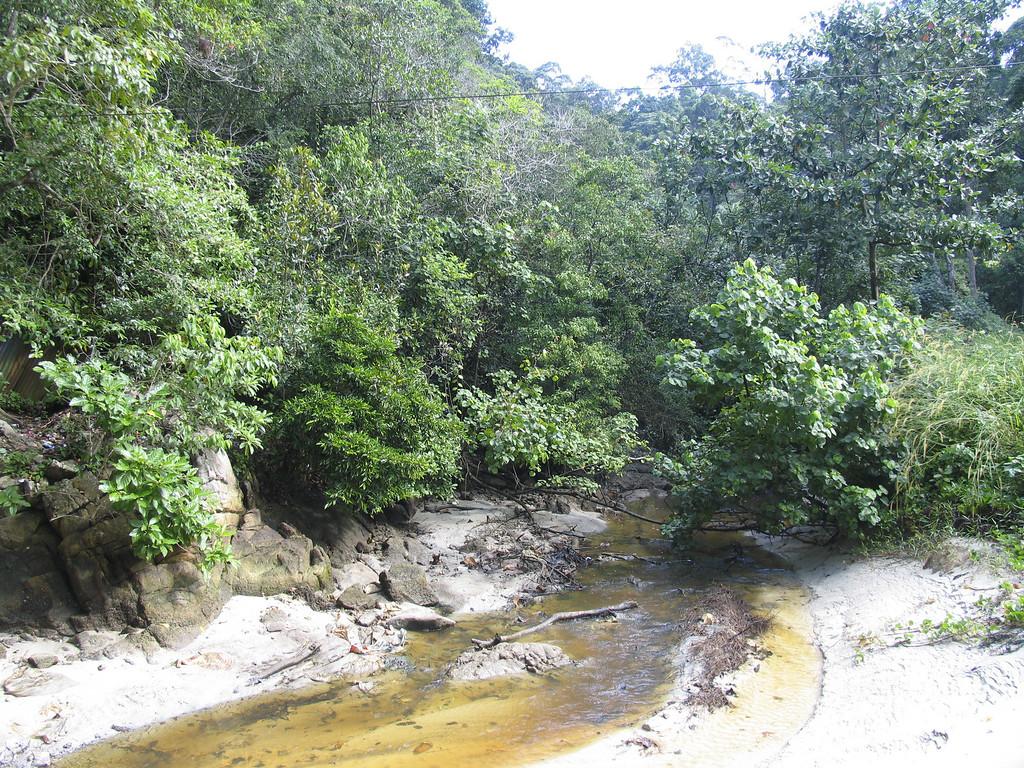 Malaysia #1-081215-175_7550